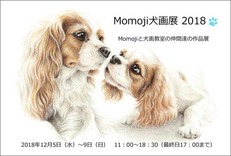 Momoji480