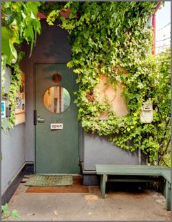 Door250